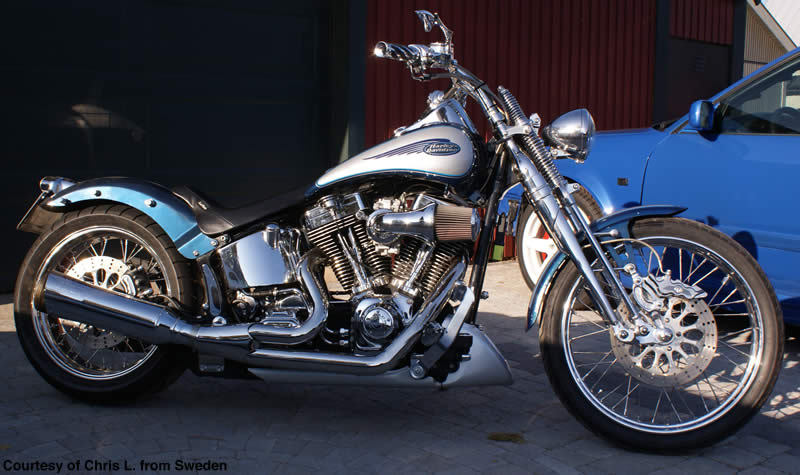 Harley Springer Softail Rake Kit :: Triple Trees